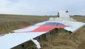 MH-17_Crash site2